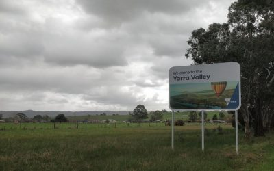 Yarra Valley & Dandenong Ranges
